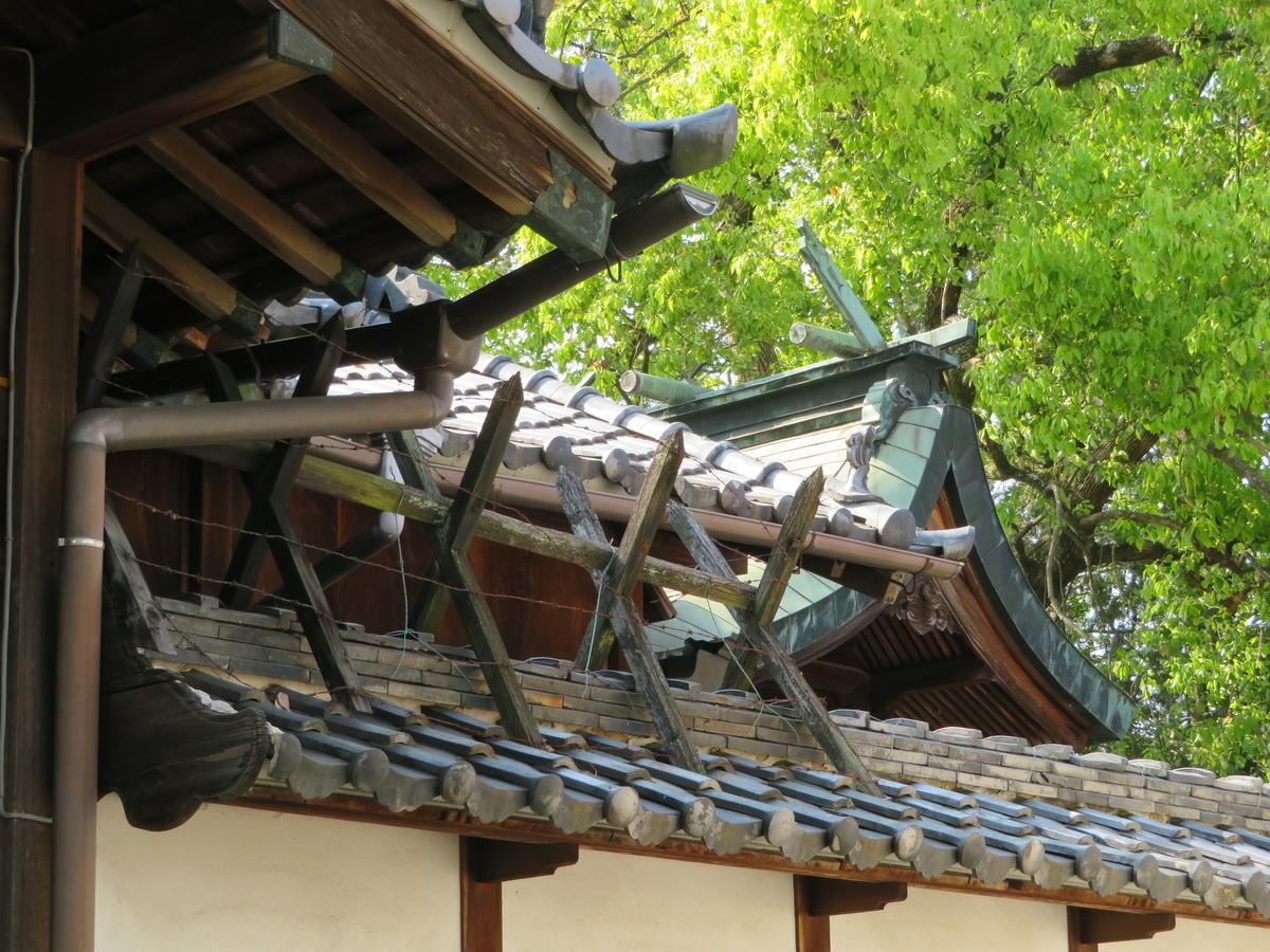 f:id:nakaimamarunosuke:20200916191205j:plain