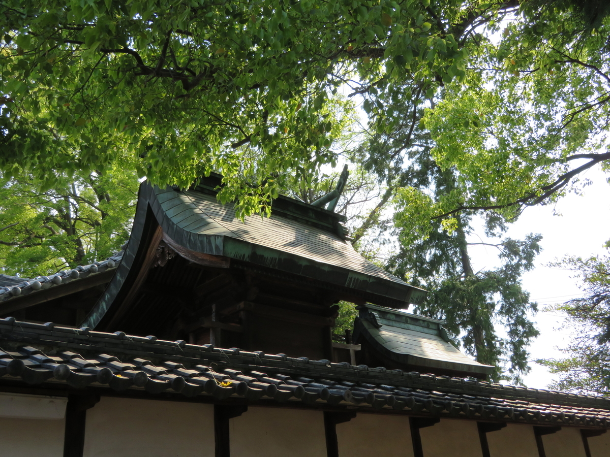 f:id:nakaimamarunosuke:20200916191230j:plain
