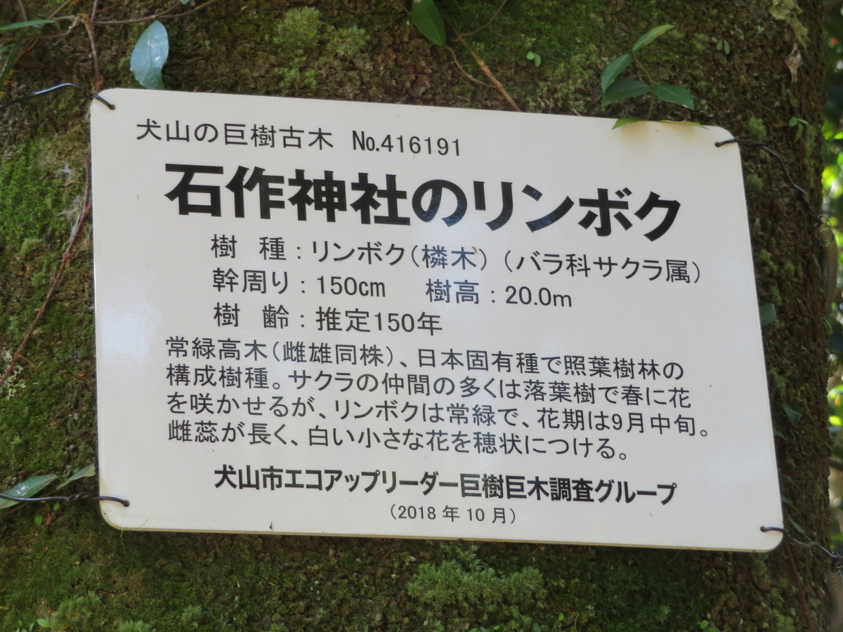 f:id:nakaimamarunosuke:20200925181132j:plain