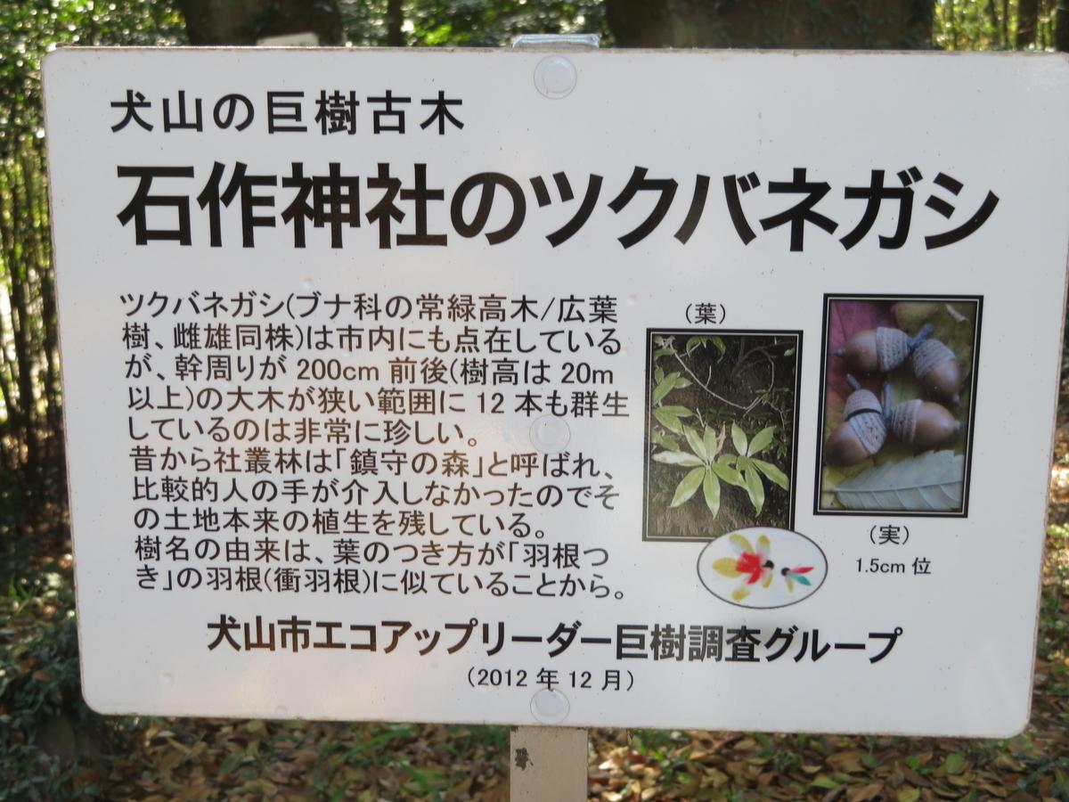 f:id:nakaimamarunosuke:20200925182502j:plain