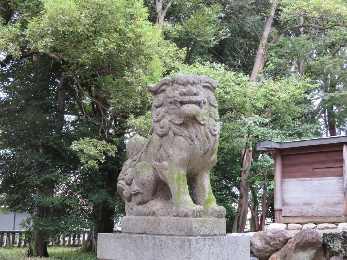 f:id:nakaimamarunosuke:20201018151104j:plain