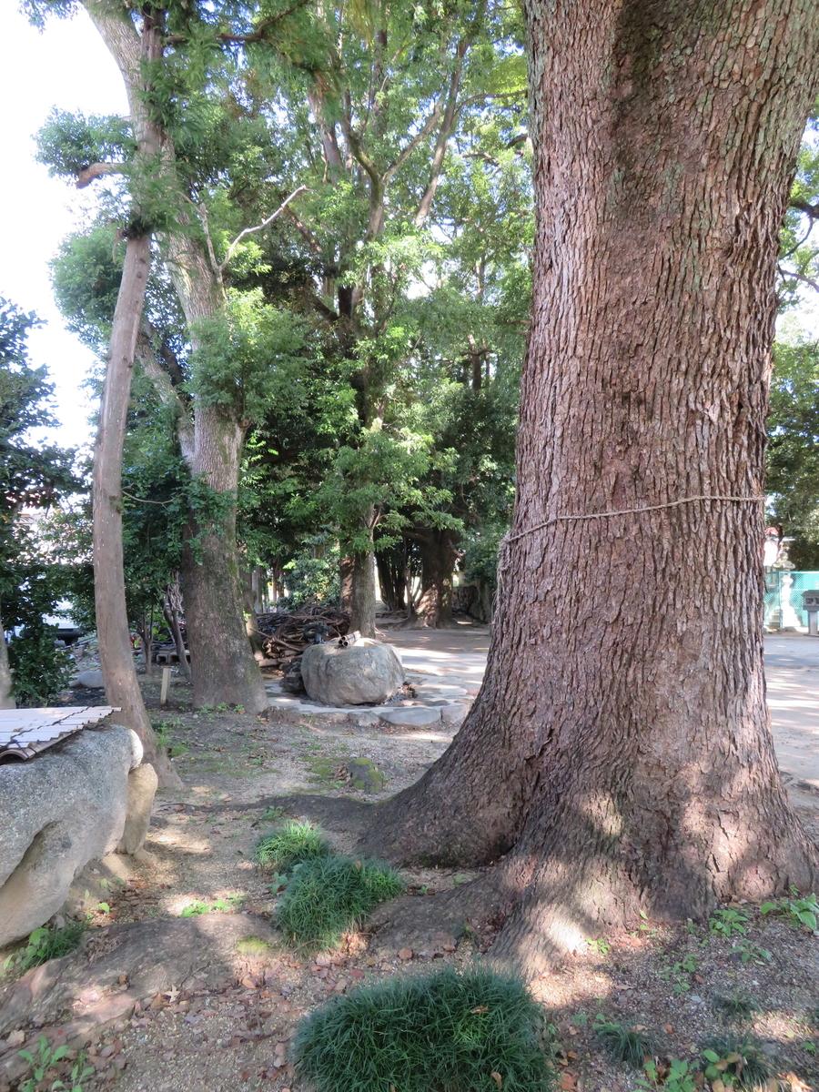 f:id:nakaimamarunosuke:20201029222701j:plain