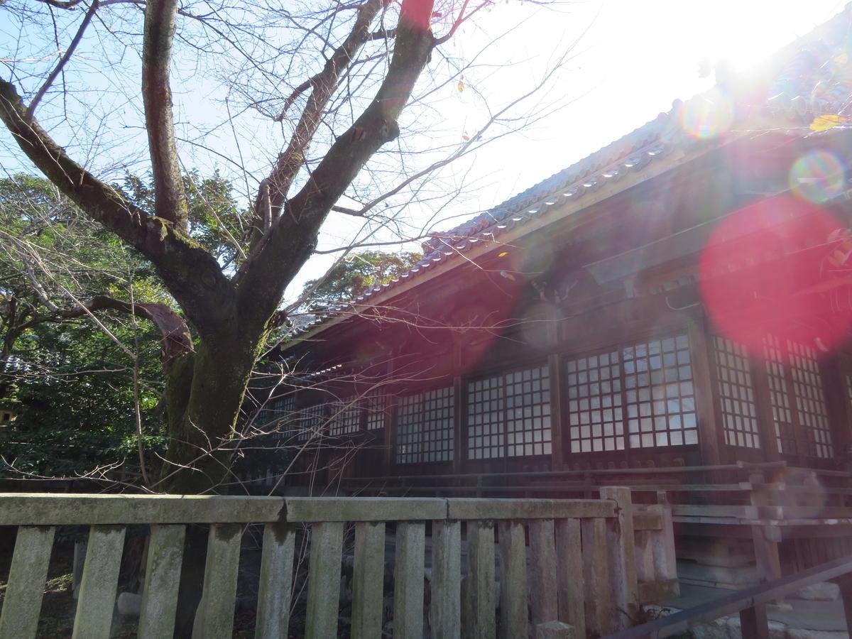 f:id:nakaimamarunosuke:20201031223014j:plain