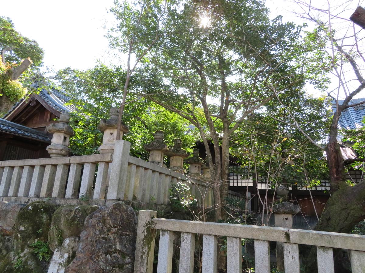 f:id:nakaimamarunosuke:20201031223038j:plain