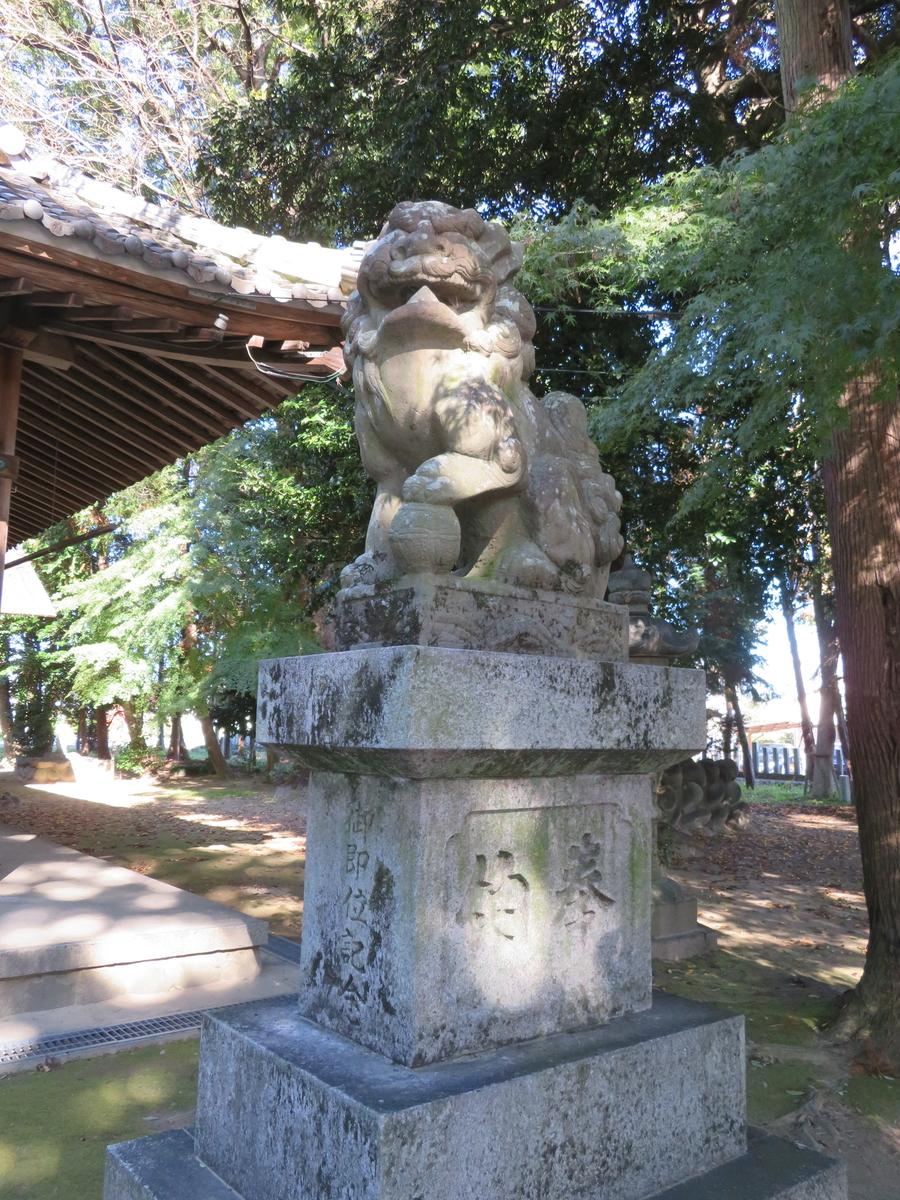 f:id:nakaimamarunosuke:20201122100440j:plain