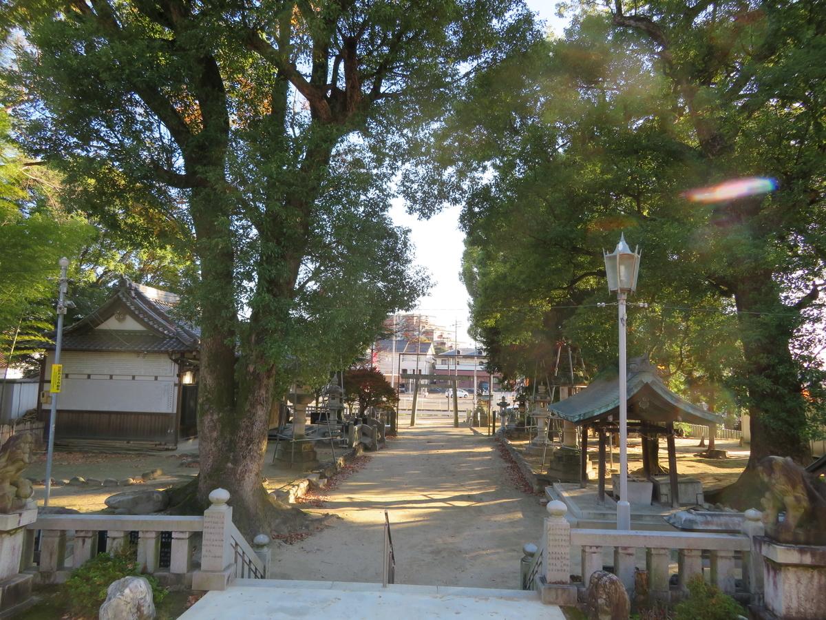 f:id:nakaimamarunosuke:20201122114817j:plain
