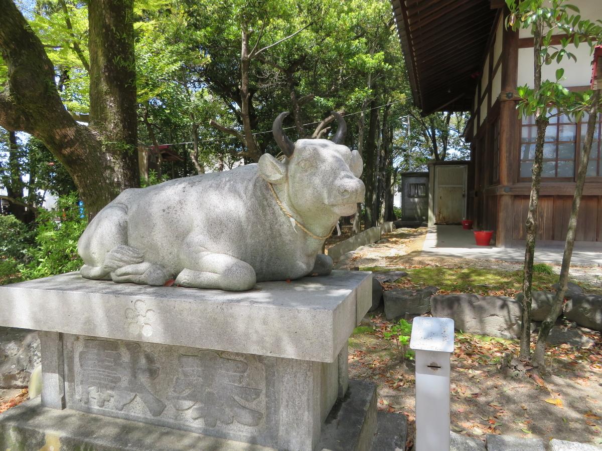 f:id:nakaimamarunosuke:20201129102830j:plain