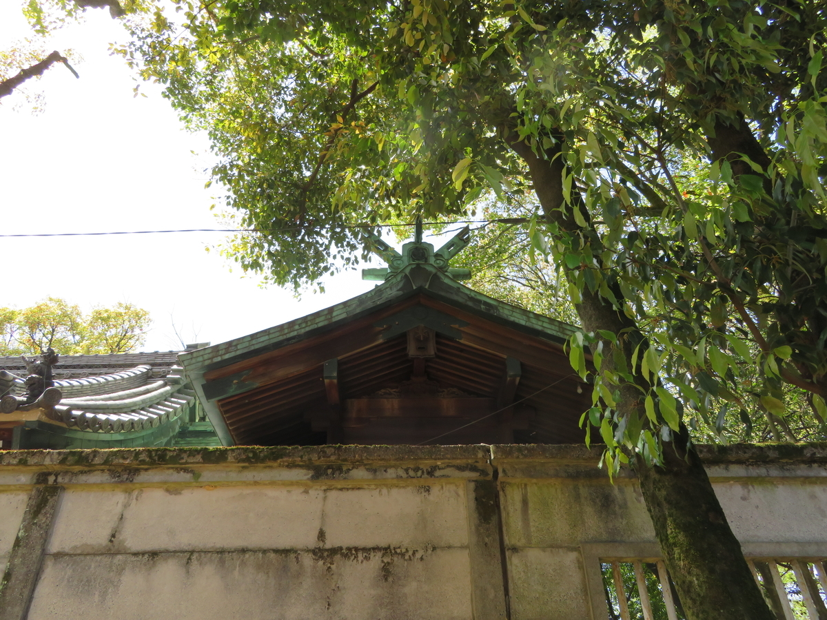 f:id:nakaimamarunosuke:20201129104007j:plain