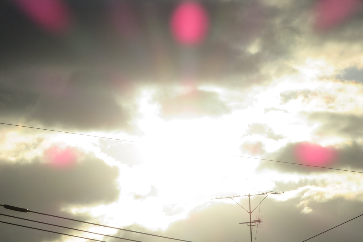 f:id:nakaimamarunosuke:20210101081943j:plain