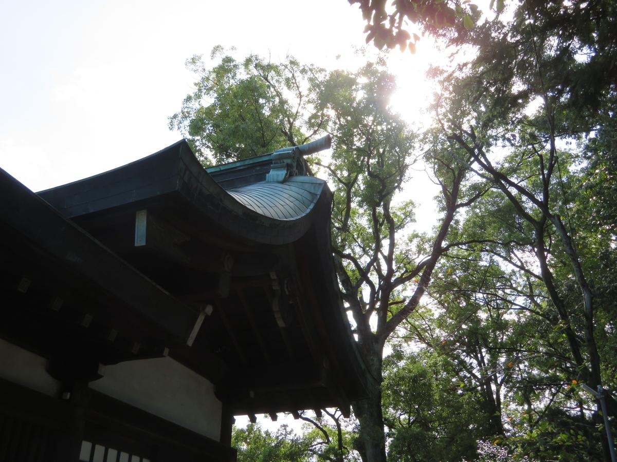 f:id:nakaimamarunosuke:20210404104208j:plain