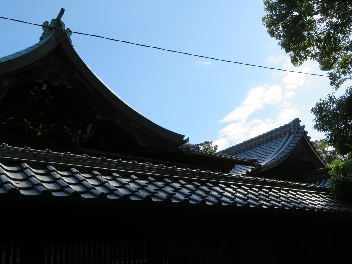 f:id:nakaimamarunosuke:20210404104310j:plain
