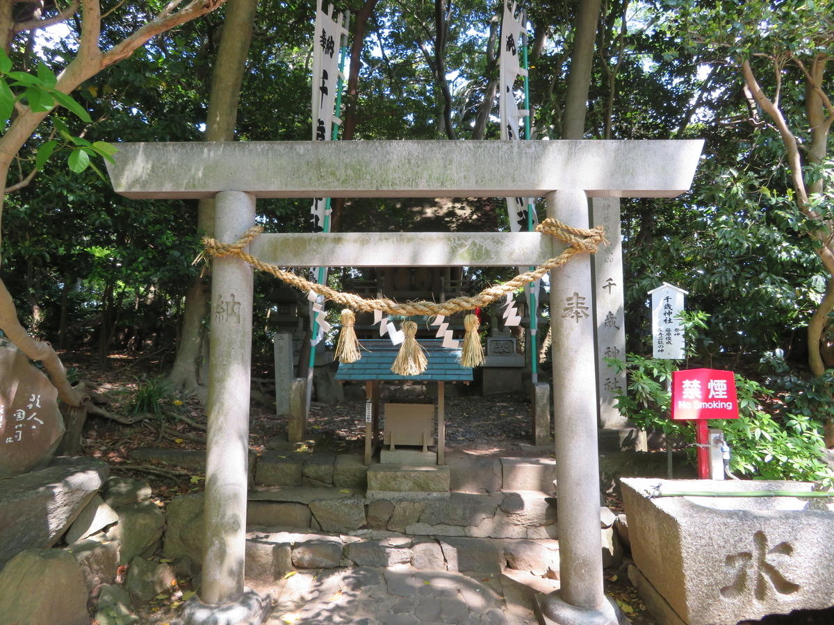 f:id:nakaimamarunosuke:20210504104907j:plain