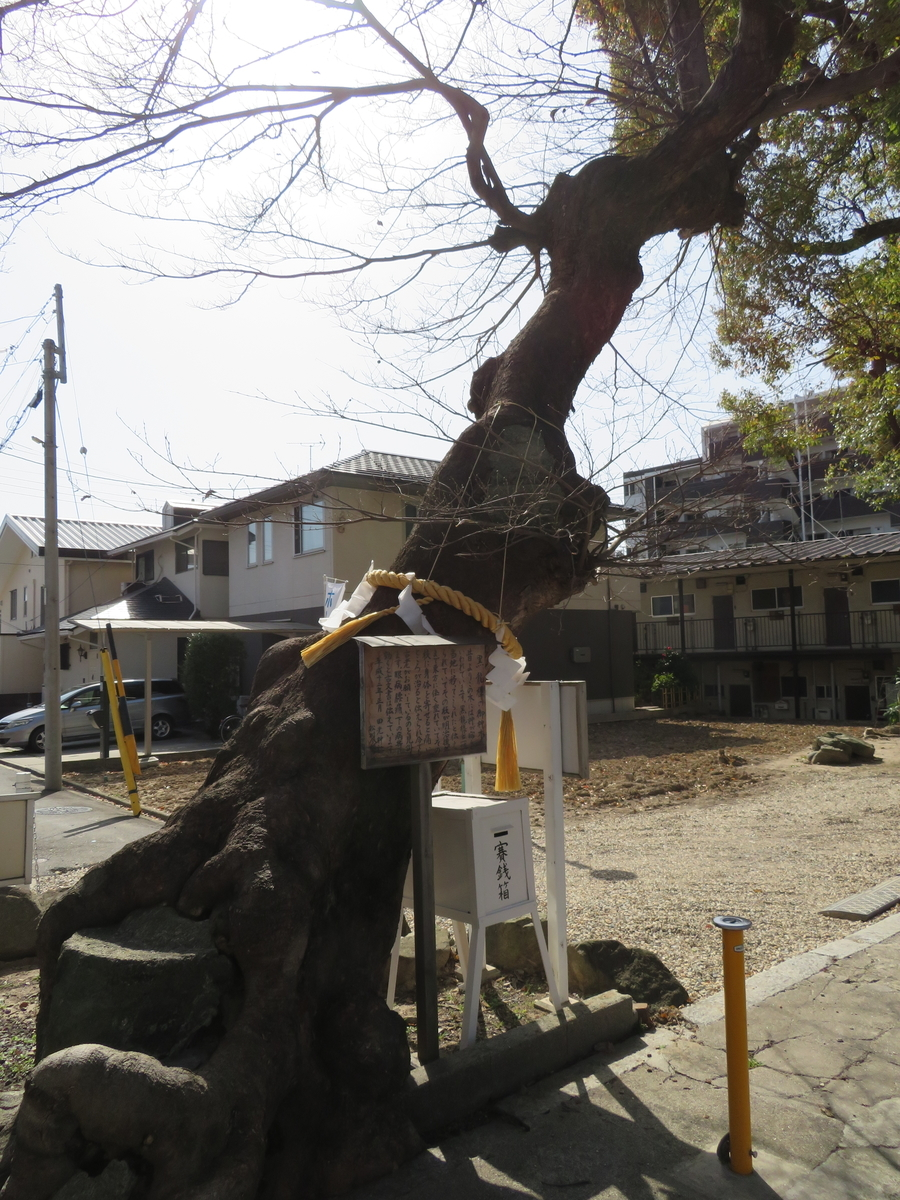 f:id:nakaimamarunosuke:20210731193544j:plain