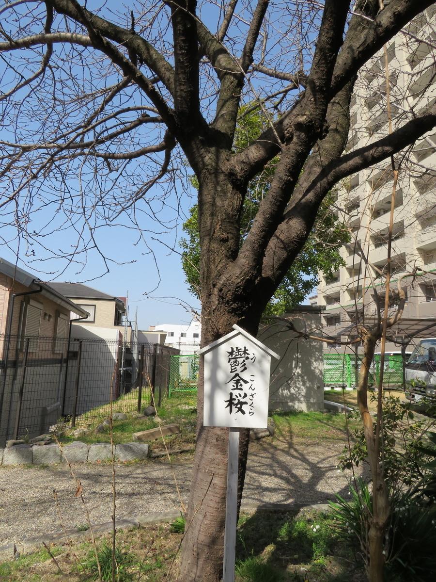 f:id:nakaimamarunosuke:20210731193728j:plain