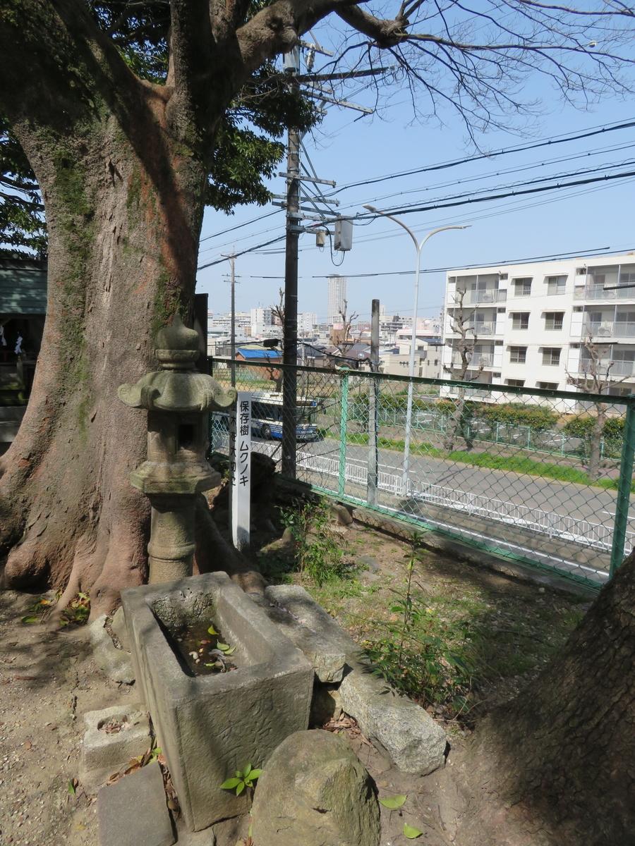 f:id:nakaimamarunosuke:20210731221409j:plain