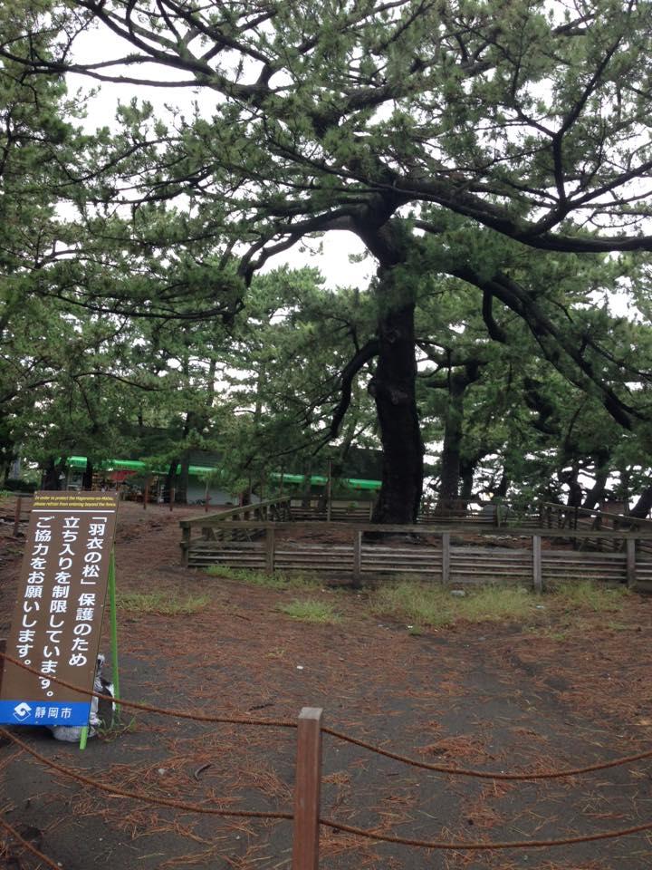 f:id:nakajima0190:20170530063400j:plain