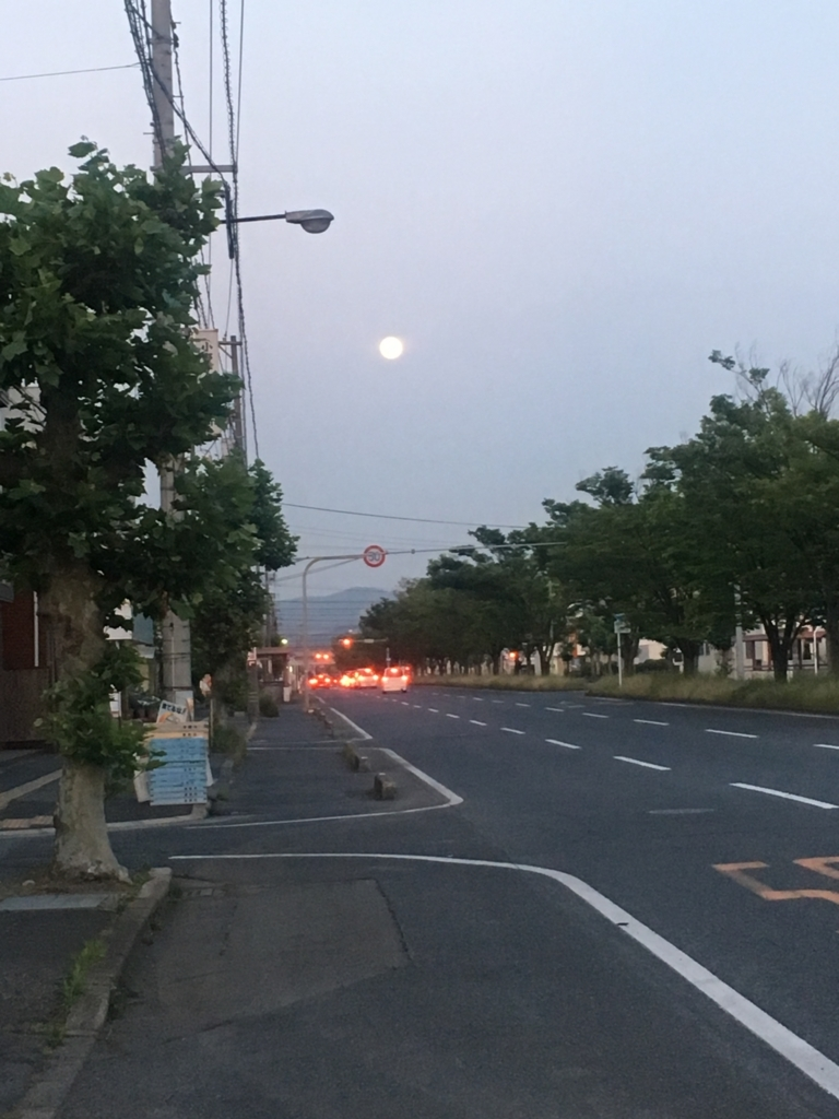 f:id:nakajima0190:20170531201851j:plain