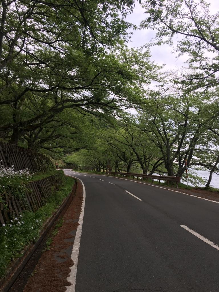 f:id:nakajima0190:20170828190144j:plain