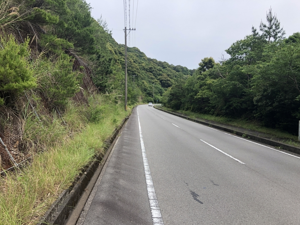 f:id:nakajima0190:20180528161147j:plain