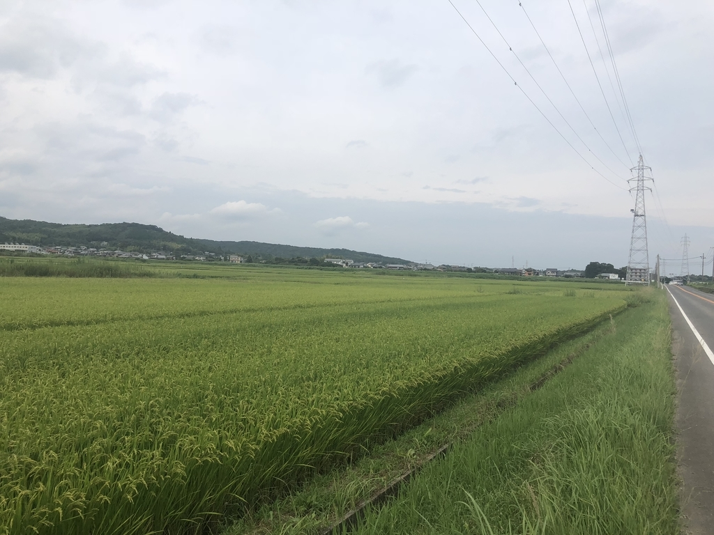 f:id:nakajima0190:20180926094406j:plain
