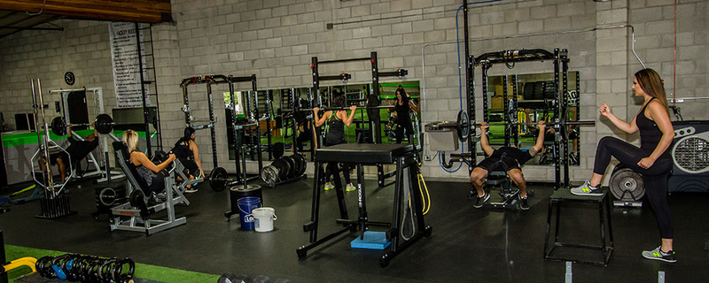 レジスタンスサーキットトレーニングの身体の適応
