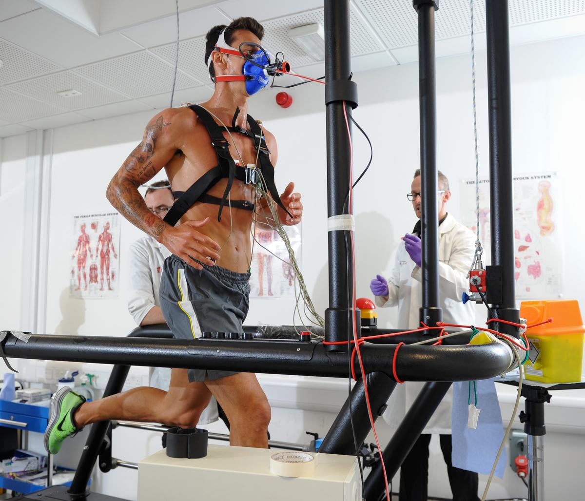 酸素摂取量および運動に対する有酸素性代謝と無酸素性代謝の貢献