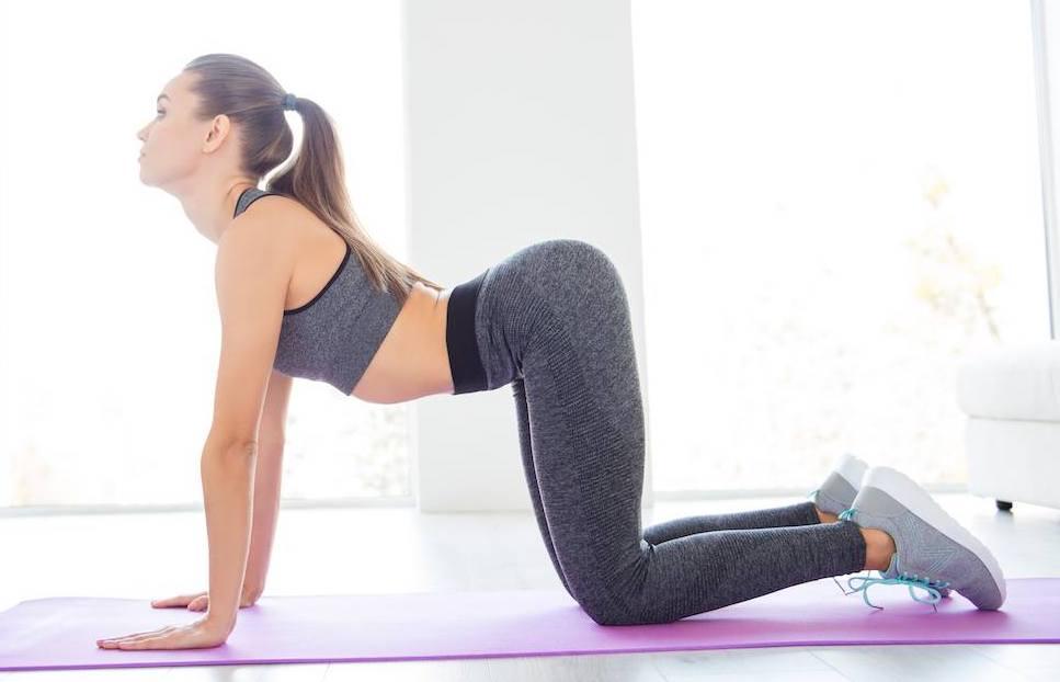 慢性的背部痛に対する脊椎トレーニングプログラム