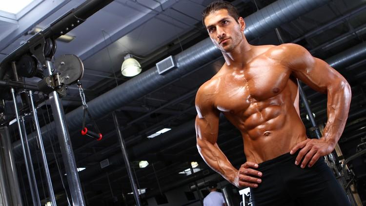 筋肥大のメカニズム(収縮タンパク質(アクチンとミオシン)のサイズと量、サルコメア(筋節)の数が同時に増加する)