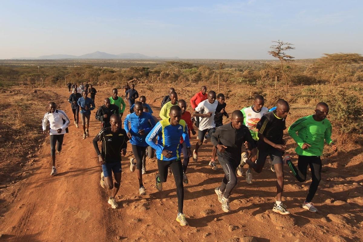 高地トレーニングの目的(造血、乳酸代謝、換気応答、緩衝能力などの改善)