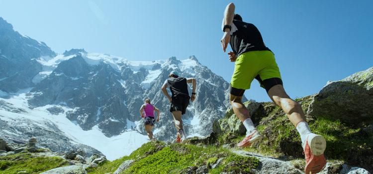 高地トレーニングによる持久力アップに赤血球増量に伴う乳酸トランスポーター増量が貢献している