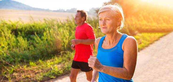 エクササイズによる高齢者の認知機能向上(エクササイズ量の多い人ほど、脳の前頭前野、頭頂葉、側頭葉における灰白質容積が大きく、脳梁の白質容積も大きい)