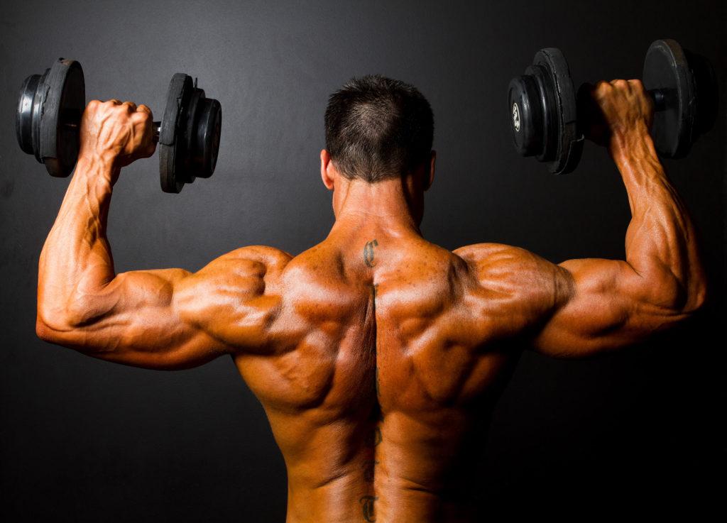 骨格筋の筋肥大適応とは(ひとつの理論として、筋肥大は骨格筋に本来備わる、筋を媒介とした局所的なメカニズムを経て促進される)
