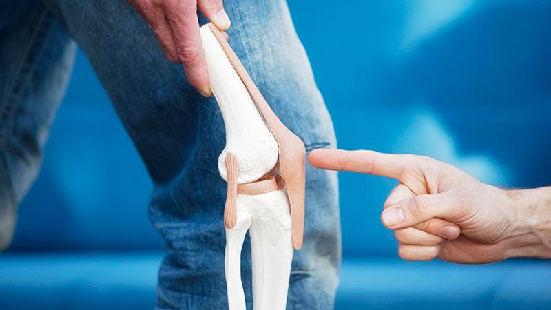 膝置換術処置による機能的転帰に関する差異(単顆膝関節置換術と片側膝関節置換術では非術脚に対して患側の大腿四頭筋の筋力低下の改善が重要になる)