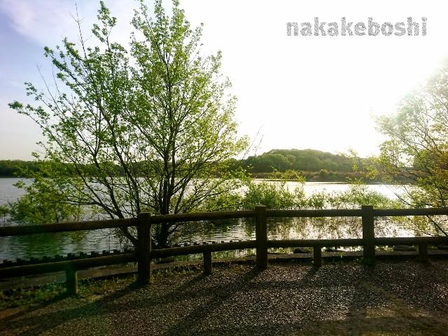 f:id:nakakeboshi:20180416183140j:image
