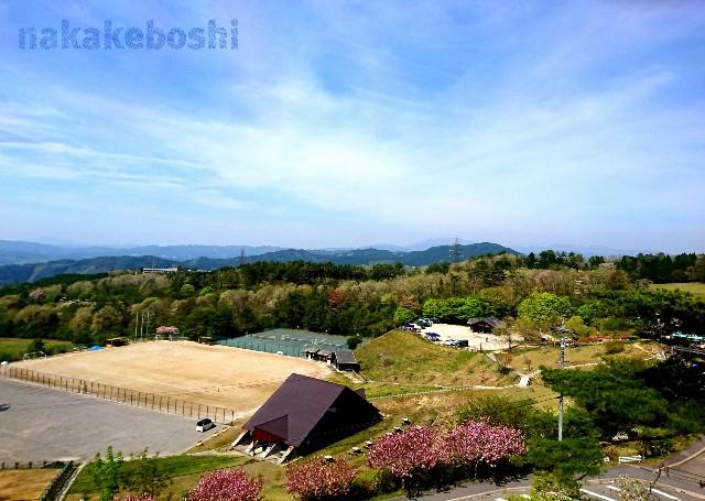 f:id:nakakeboshi:20180422150014j:image