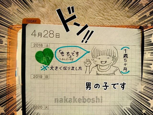 f:id:nakakeboshi:20180428083144j:image