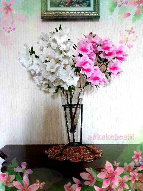 f:id:nakakeboshi:20180428115606j:image