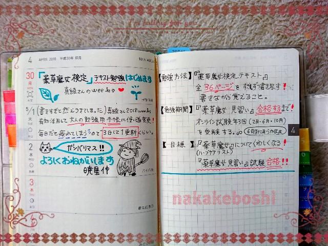 f:id:nakakeboshi:20180430094723j:image