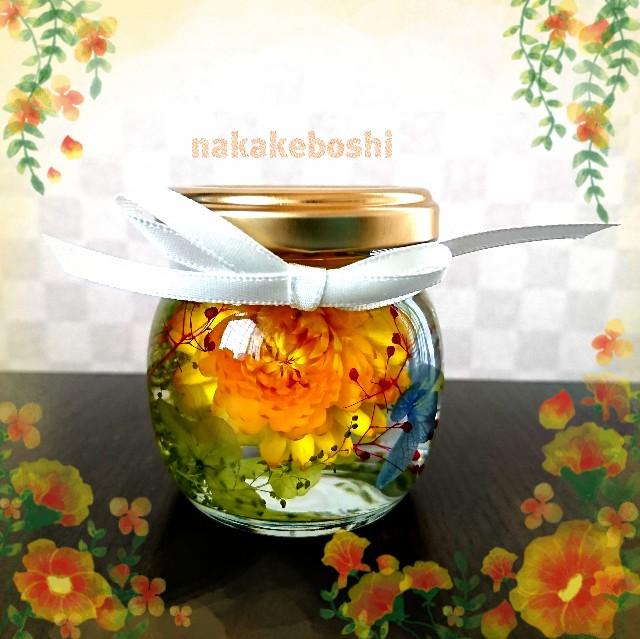 f:id:nakakeboshi:20180430150355j:image