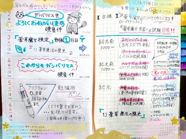 f:id:nakakeboshi:20180502122533j:image