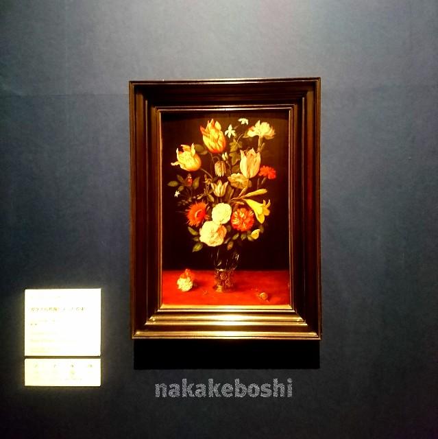 f:id:nakakeboshi:20180512040745j:image