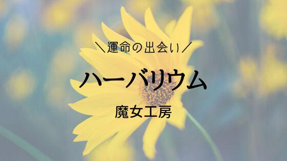 f:id:nakakeboshi:20180520032229j:plain