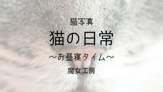 f:id:nakakeboshi:20180520081149j:plain
