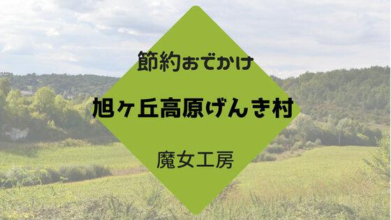 f:id:nakakeboshi:20180520134001j:plain