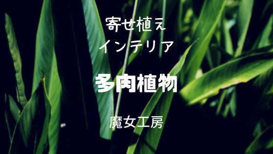 f:id:nakakeboshi:20180520174741j:plain