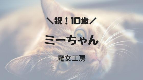 f:id:nakakeboshi:20180520182245j:plain