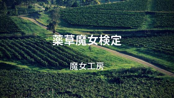 f:id:nakakeboshi:20180526005431j:plain