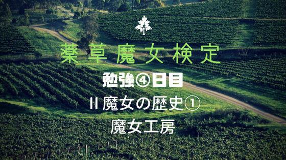 f:id:nakakeboshi:20180615035115j:plain