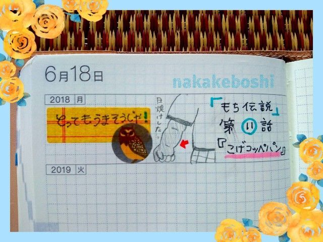 f:id:nakakeboshi:20180615120428j:image