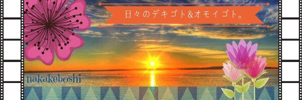 f:id:nakakeboshi:20181111073807j:plain